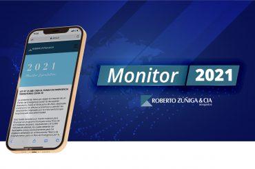 20210108 Monitor ERZU-02
