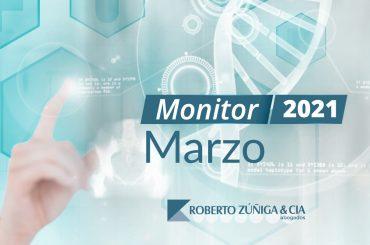 Monitor Marzo Erzu-01